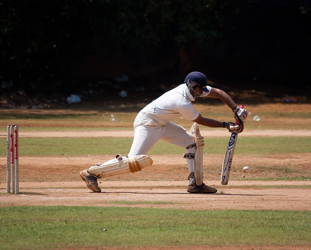 cricket-166906_640