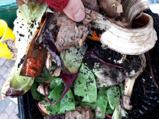 Get Composting in Trafford