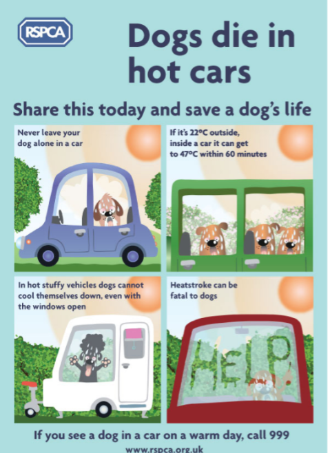 Do not leave dogs in cars or vans during the warm weather