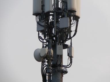 Upgraded mast in Timperley: Image by Darren Marsden