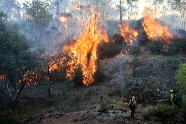 Bushfires, Australia - 12 Jan 2020